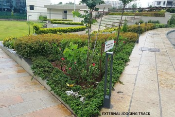 Astonia Royale Jogging Track