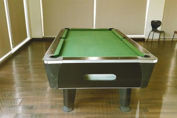 Amit's Colori Snooker Table