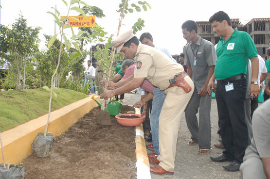 Tree plantation @ Colori, Pune.